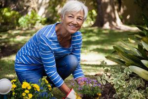 Elderly Woman gardening